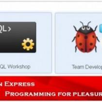 Oracle Application Express — Что такое APEX?